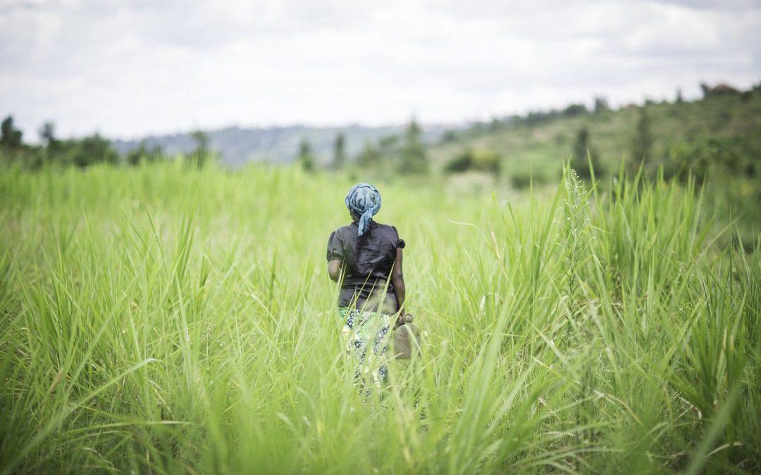 Help Build the First Women's Shelter in Rwanda