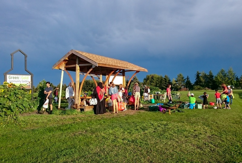 Evening market at the Green & Gold Garden in 2016
