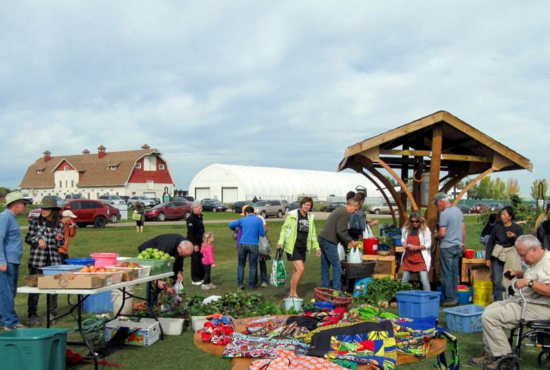 Market day at the Green & Gold Garden in 2014