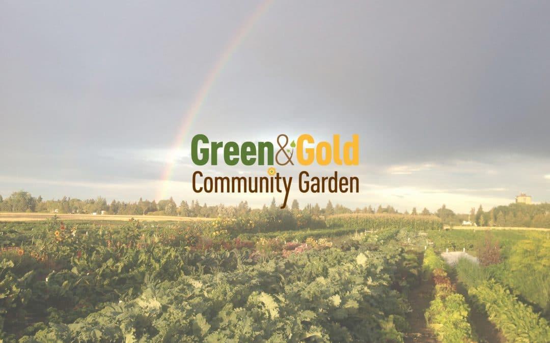 Green & Gold Community Garden COVID-19 Update