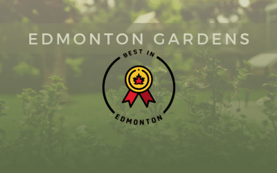 Green & Gold Garden Selected As One Of Edmonton's Best Gardens